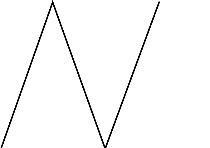 Nina Wellstein Logo